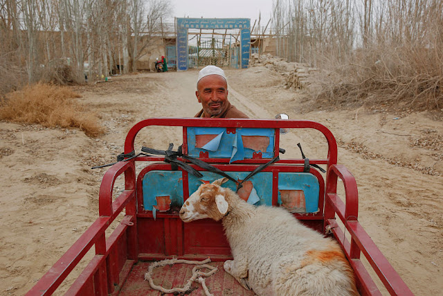 Image Attribute: A man delivers a sheep to the mosque at the tomb of Imam Asim in the Taklamakan Desert outside the village of Jiya near Hotan, Xinjiang Uighur Autonomous Region, China, March 21, 2017.  REUTERS/Thomas Peter
