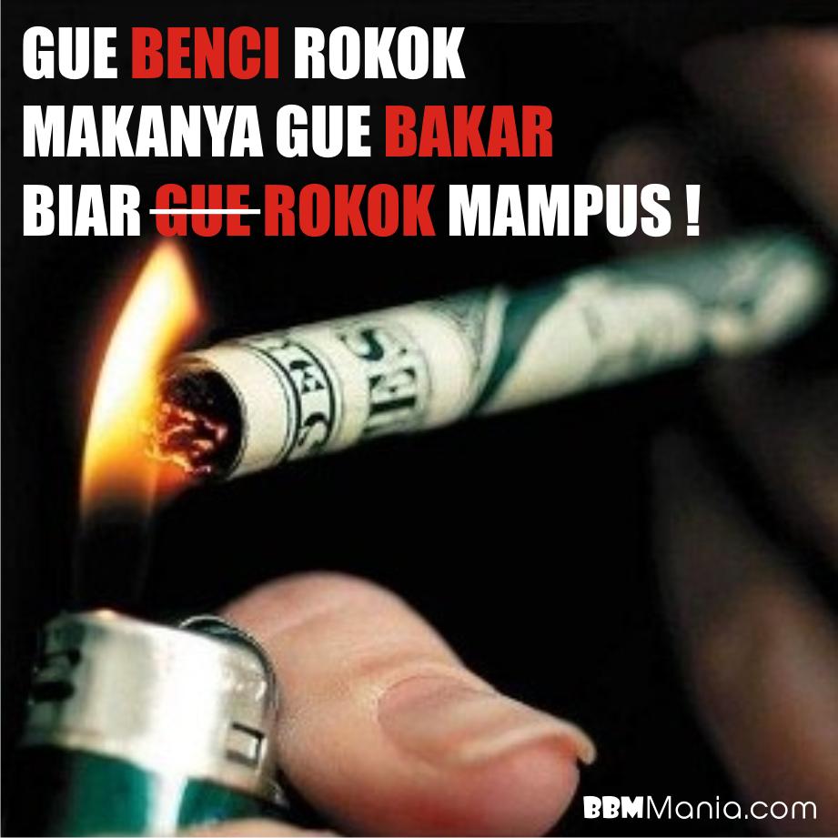 gambar dan kata kata lucu tentang rokok stok gambar lucu