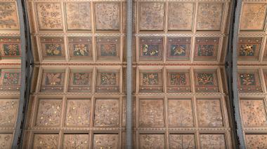 Tesoros botánicos en la bóveda del Museo de Historia Natural de Londres