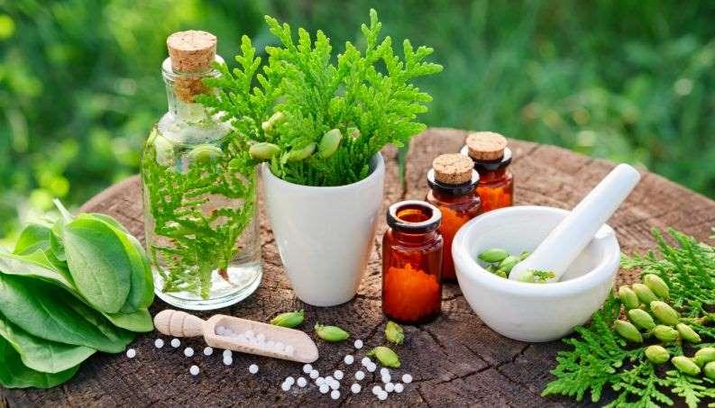 O princípio da homeopatia, de acordo do Laura Cudizio, médica endocrinologista homeopata, é encontrar a cura para doenças que prejudicam o paciente a partir do entendimento de seu corpo como um organismo só.