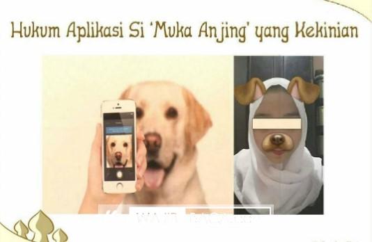 Banyak Orang Akan Marah Ketika Disebut Berkelakuan Seperti Anjing, Namun Menjadi Trend Ketika Wajah Menyerupai Anjing, Apakah Pantas?