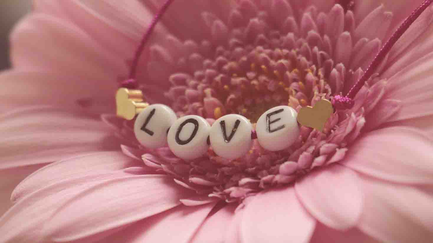 love flowers images download hd
