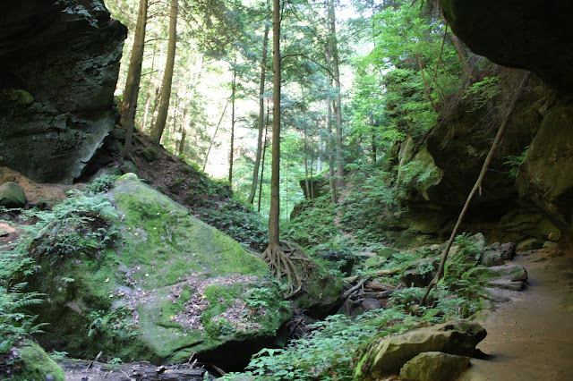 Emerald green landscape at Cantwell Cliffs in Ohio.