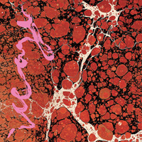 The Top 50 Albums of 2018: 04. Iceage - Beyondless