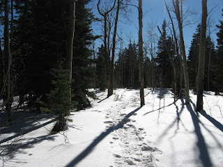 new mexico cross country ski trails