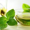 Minuman Herbal Ampuh Mengobati Mual