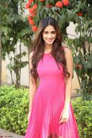 30 Best Pics of Disha Patani Tiger Shroff Girlfriend  Exclusive Galleries 029.jpg