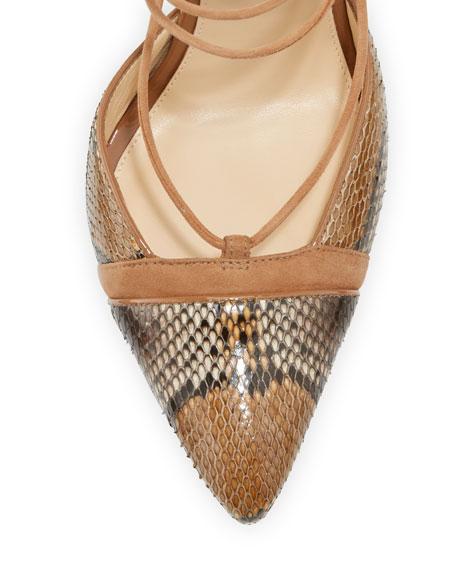 alexandre birman suede python lace up sandal