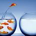 18 Dicas para mudanças interpessoal