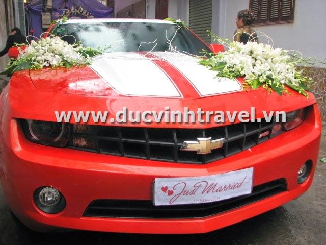 Xe cưới Camaro đỏ nổi bật của cặp đôi du học sinh Mỹ - DUC VINH TRANS 3