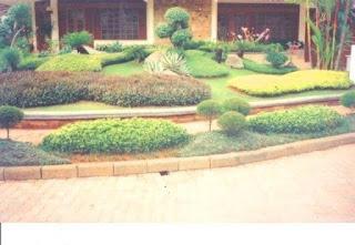 Galeri Taman - Tukang Taman Surabaya 13