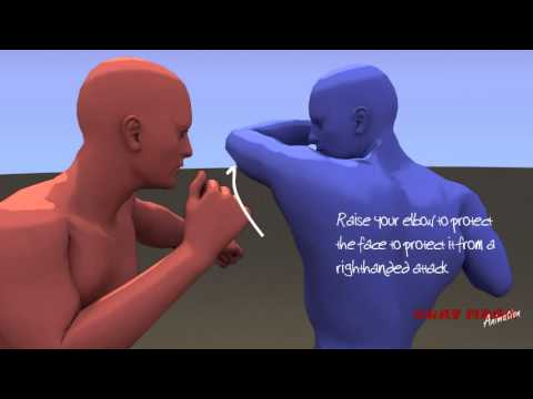 Krav Maga Animation