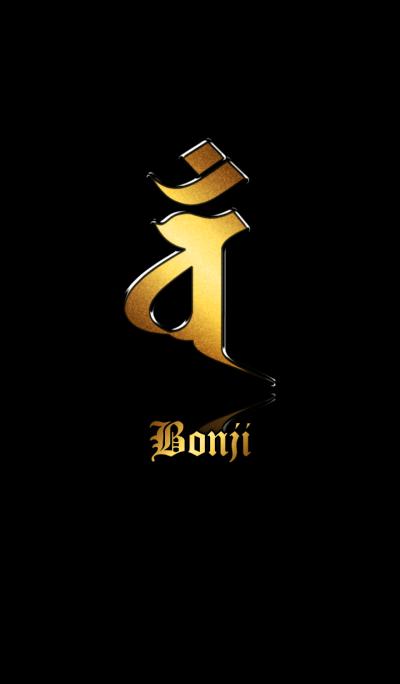 Zodiac Sanskrit [Van] Gold.Black