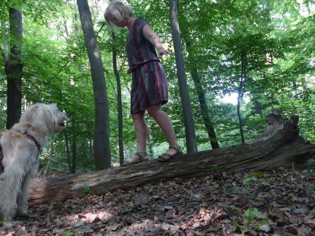 Zeit vergeuden Achtsamkeit Entschleunigung Wald Hund Spaziergang balancieren Baumstamm diegeschenkten5minutenchallenge