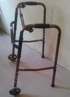Two wheel walker