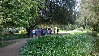 giardino, giardino di ninfa, itália, Latina, natureza, Ninfa, Itália,