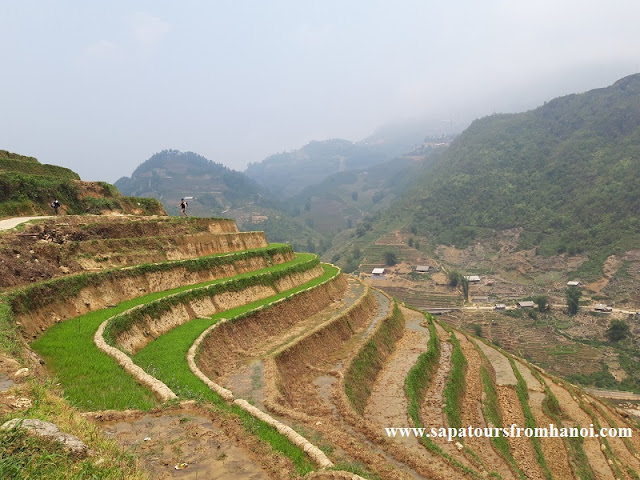 A Glimpse Of Tours To Explore Sapa 2 Days