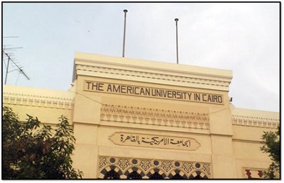 an analysis of the american university in cairo on a biology department The complexation of the pt-based anti-cancer drug oxaliplatin (oxpt) with biological ligands other than dna is believed to be a major cellular sink for the drug reducing its therapeutic potential and acting as a potential cause of toxicity.