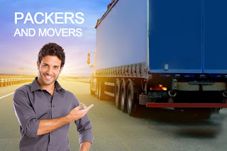 Apple Packer And Movers