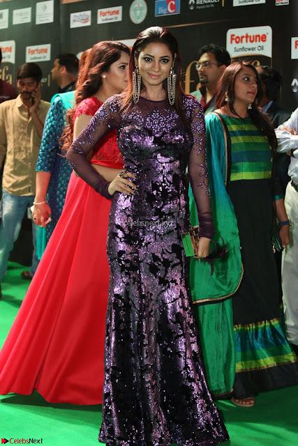 Shilpi Sharma looks Glamorous in Transparent Purple Glittering Gown at IIFA Utsavam Awards 001.JPG
