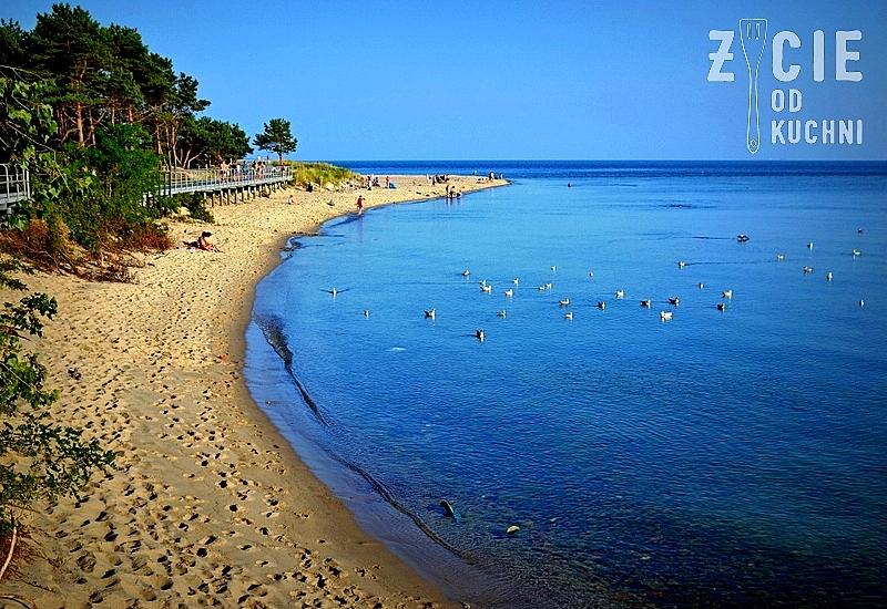 hel, plaza na helu, mierzeja helska, ranking plaz, dzikie plaze, wybierz plaze, najpiekniejsza plaza, piasek, morze, mewy,  zycie od kuchni