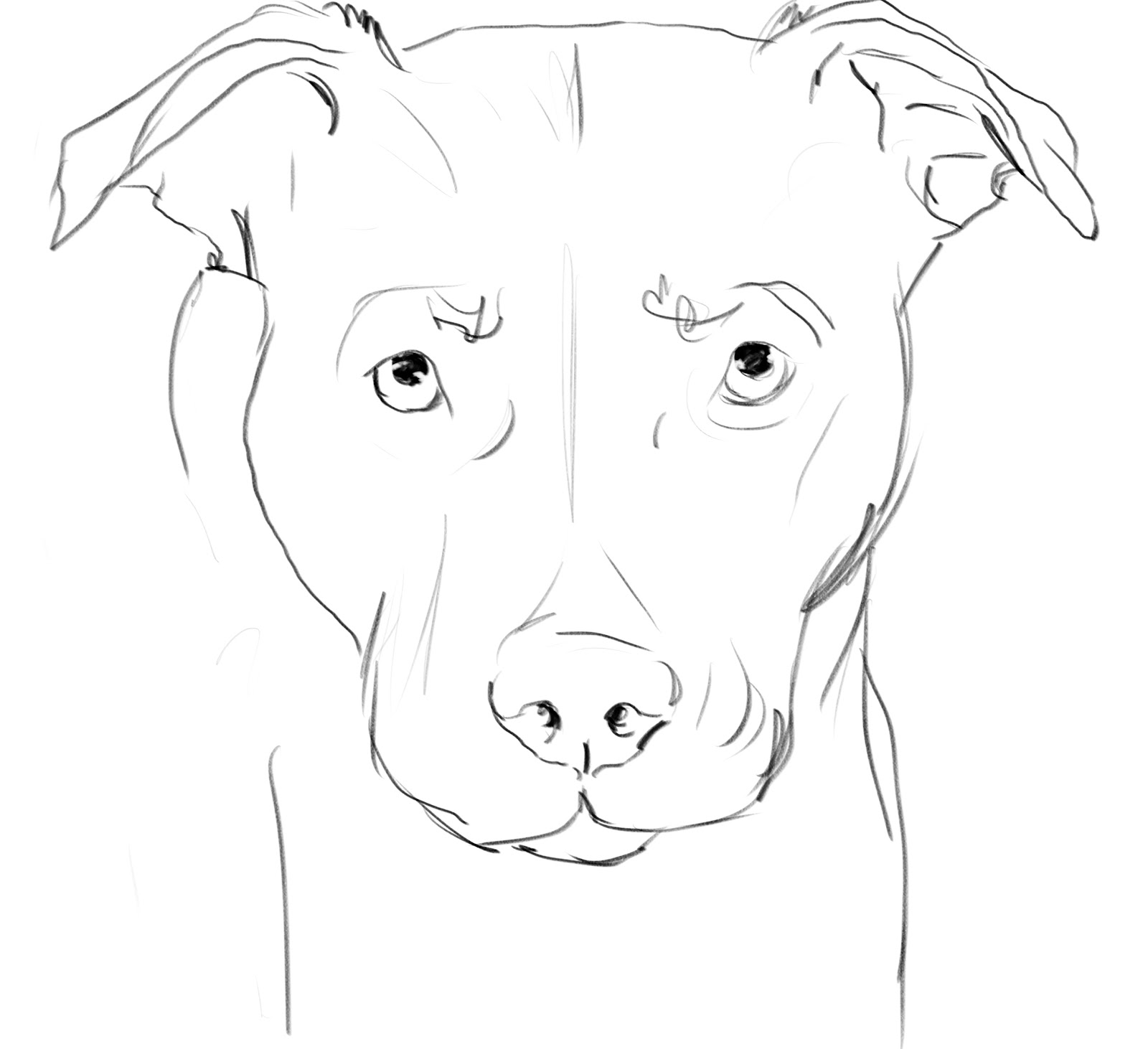 It's just a photo of Comprehensive Drawing Of Dogs Faces