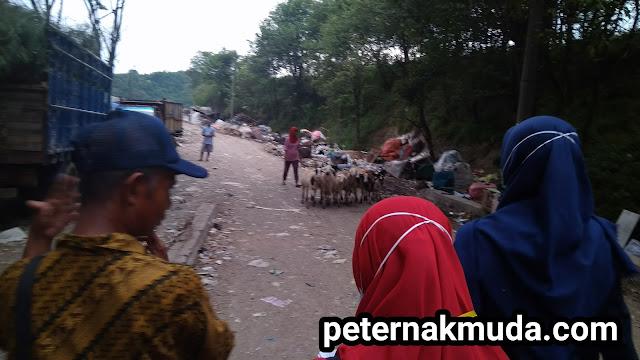 perjalanan ke Tempat Tempat Pembuangan Sampah Terpadu TPST Piyungan