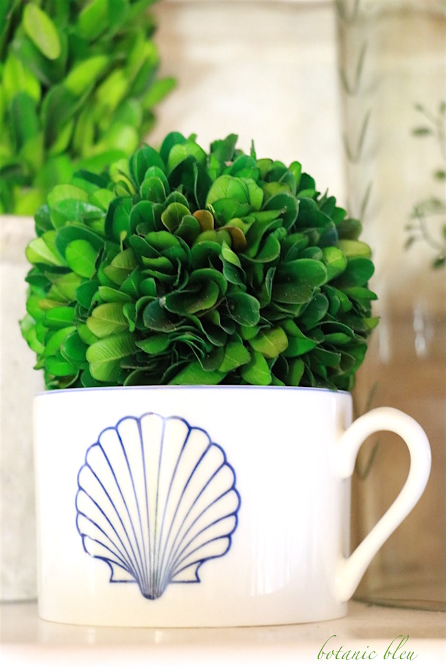 preserved-boxwood-in-a-shell-decorated-cup