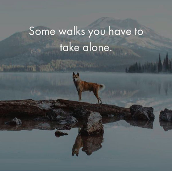 Some walks you have to take alone.