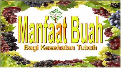 manfaat buah bagi kesehatan tubuh