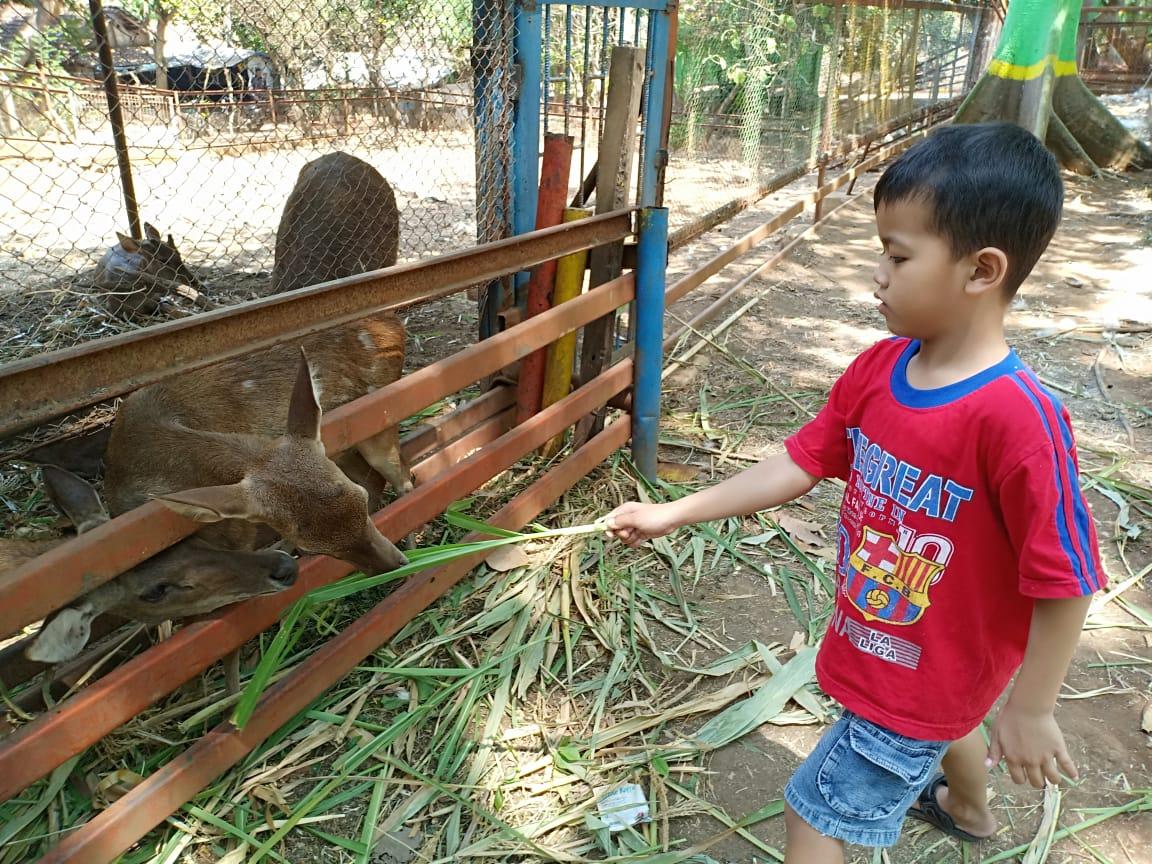Kebun Binatang Mini di TPA Margorejo Pati - Sinau Bareng