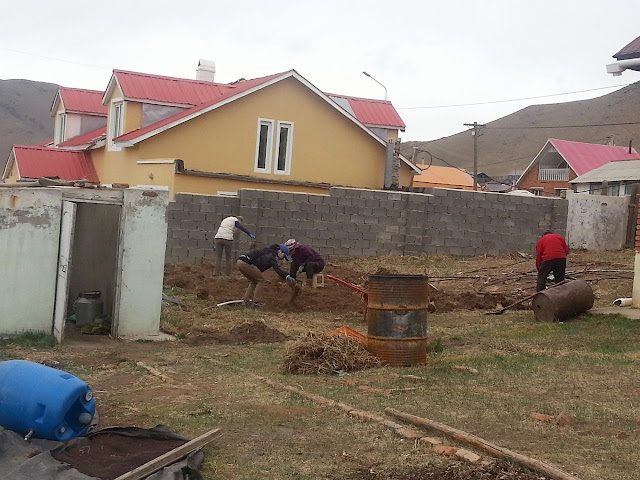 The planting area for Asral NGO Gachuurt project