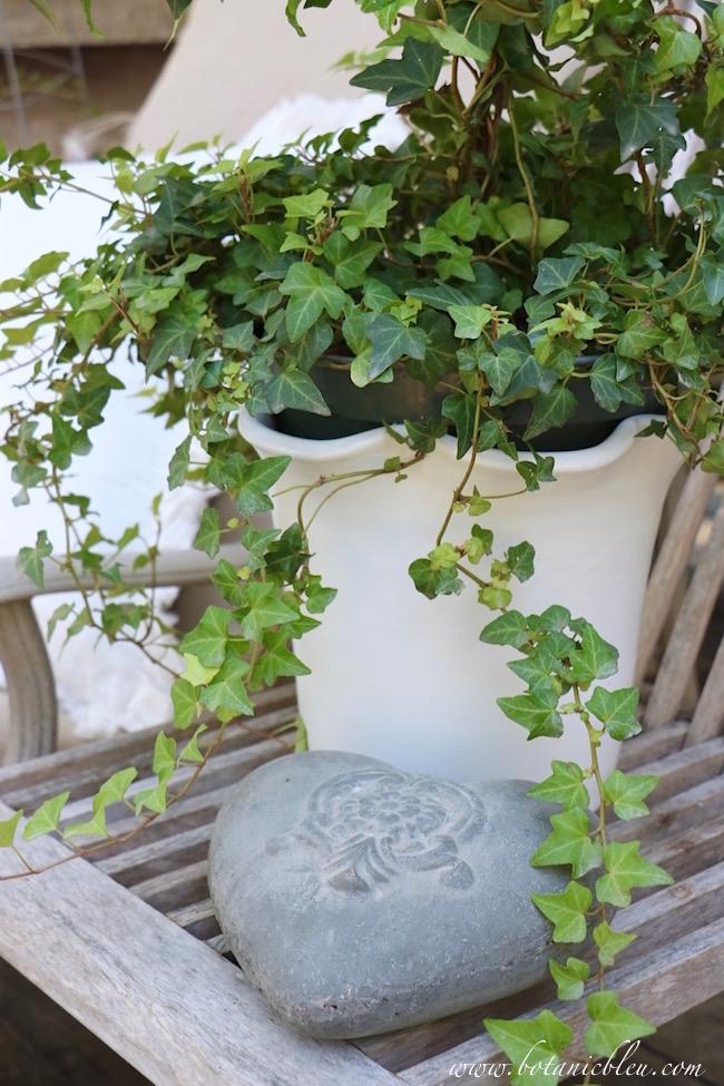 white-ruffle-edge-ceramic-flower-pot-adds-french-design
