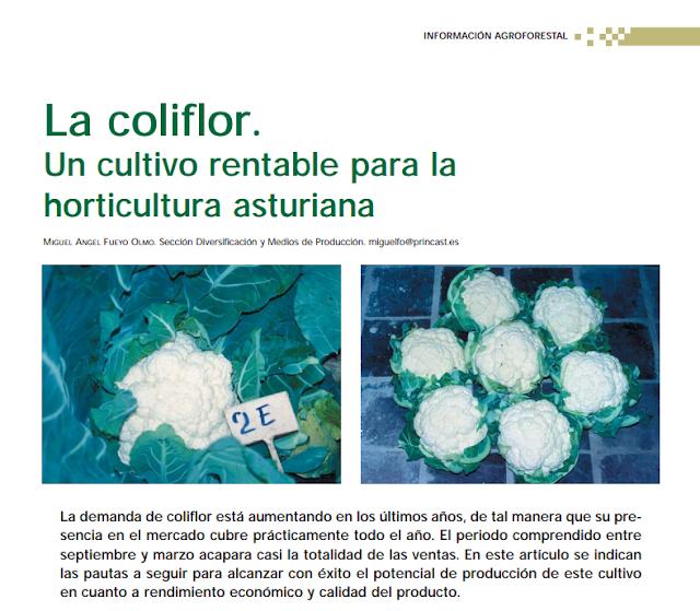 Un documento para iniciar una empresa hortícola en Asturias