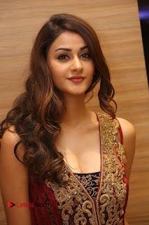 Actress Aditi Arya Pictures at Ism Audio Launch  0003.JPG