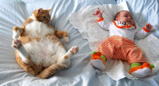 25 Thrilling Images That Made Our Day - That's what happens when a baby and a cat learn the same dance moves!