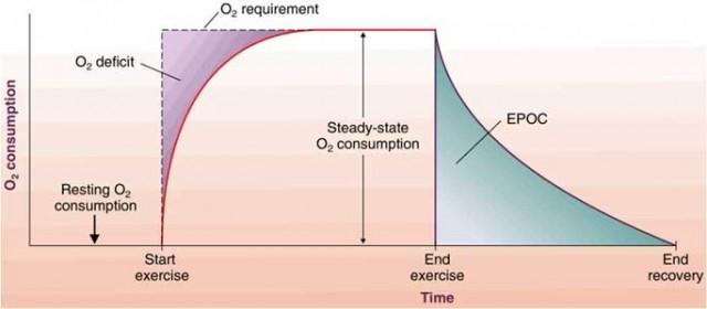 gráfica que explica el déficit de oxígeno
