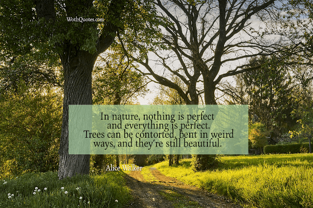 Quotes and Sayings About Nature