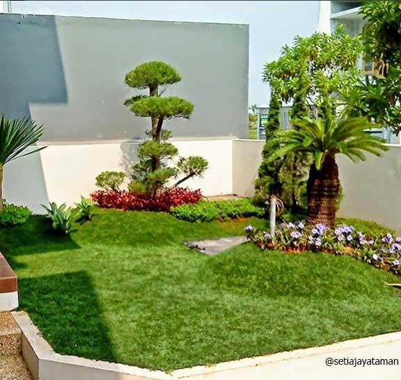 Taman Rumah Minimalis