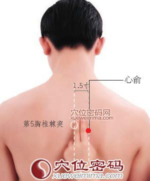 心俞穴位 | 心俞穴痛位置 - 穴道按摩經絡圖解 | Source:xueweitu.iiyun.com