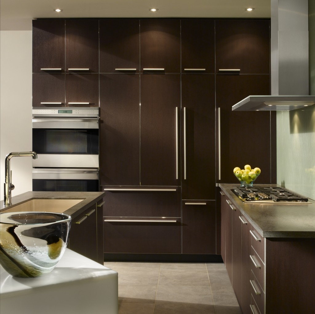 custom cabinet designs are just perfect for a beautiful and unique dcor you can decide on each and every aspect of the cabinets yourself