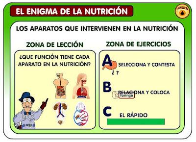 http://ntic.educacion.es/w3//eos/MaterialesEducativos/mem2007/enigma_nutricion/enigma/aparatos.html