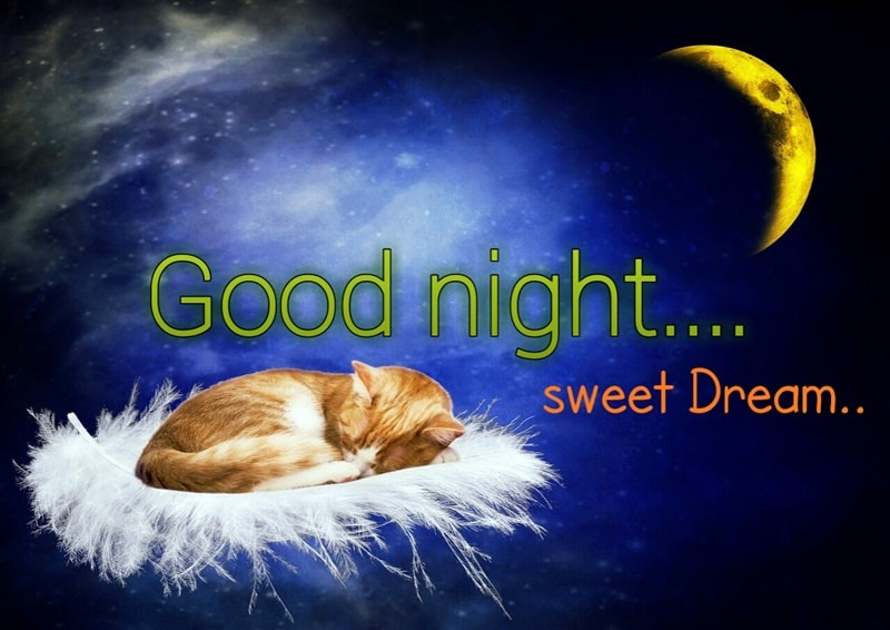 Moon_and_Stars-good-night_Free_Stock_Images_Photos_Quotes_cat_moon