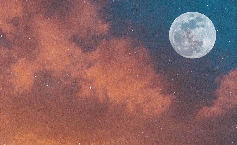 Poem: Worm Moon