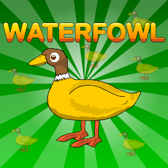 Games2Jolly Waterfowl Rescue