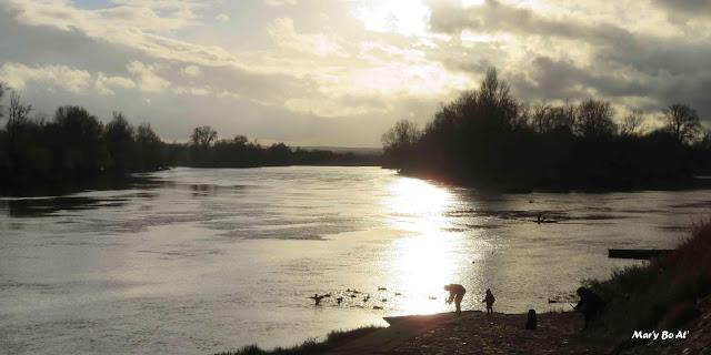 Reflets en Loire