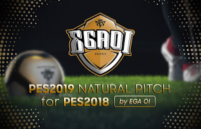 PES 2018 PES 2019 Pitch by EgaOi