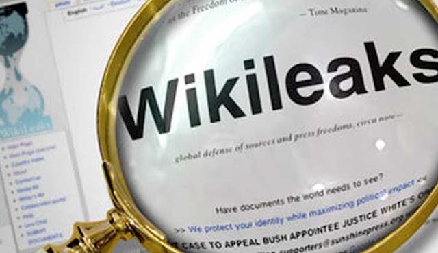 """Margarita Pastene: """"El coraje de Assange es un ejemplo para el mundo"""""""