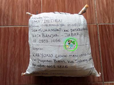 Benih pesana IMAM MUSTOFA Nganjuk, Jatim.  (Sesudah Packing)