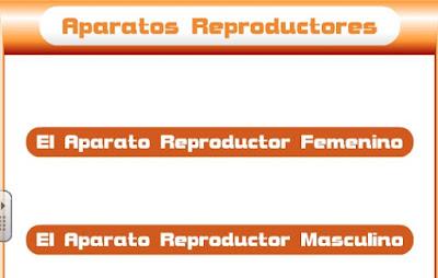 http://www.educa.jcyl.es/educacyl/cm/gallery/Recursos%20Infinity/juegos_jcyl/cuerpo_rep/home2.html